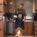 Φαγητό για σκύλους