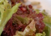 Σαλάτα του χειμώνα με ρόδι και πάπια