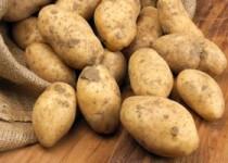 Τα μυστικά της Πατάτας