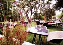 Ο Ηλίας Μαμαλάκης στο fuga secret garden