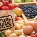αγορές-βιοκαλλιεργητών_νηστικό-αρκούδι