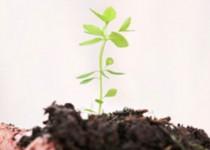 Οι Νέοι Αγρότες και η νεανική πράσινη επιχειρηματικότητα
