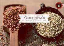 Να σας συστήσουμε την quinoa ή κινόα, το ψευδο-δημητριακό!