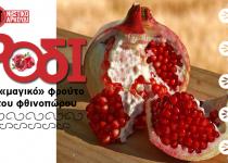 Ρόδι, το «μαγικό» φρούτο του φθινοπώρου