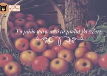Το μήλο κάτω απ' τη μηλιά…