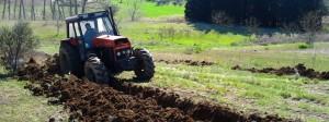 tractor berryland