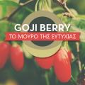 godji berry_Νηστικό Αρκούδι
