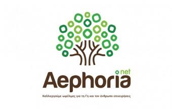 aephoria.net_Νηστικό-Αρκούδι